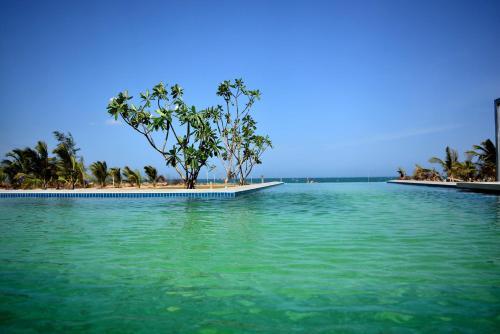Aprota Villas Arugambay - Sri Lanka - ARUGAM BAY
