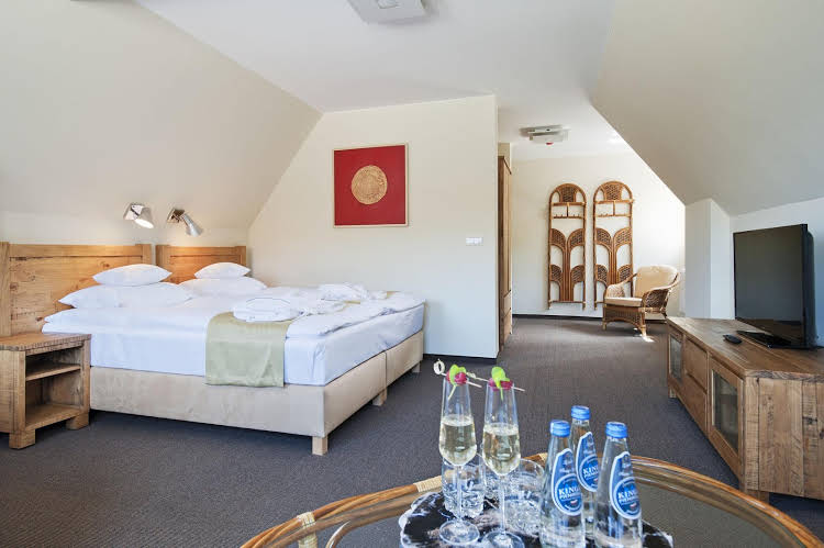 Hotel ?ywiecki Medical Spa & Sport - Poland - Krakow