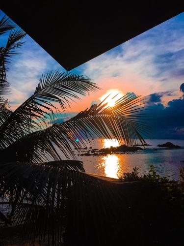 Zama Resort - Thailand - Koh Phangan