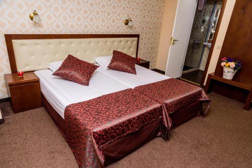SPA Hotel Medicus - Bulgaria - Sofia